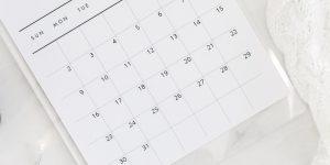 Calendario de proyectos